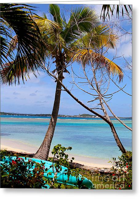 Marina Cay Beach Greeting Card by Carey Chen