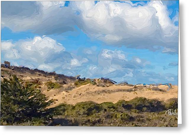 Marina State Beach Dunes Iv Greeting Card by Jim Pavelle