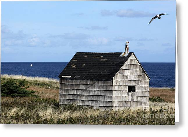 Maritime Cottage Greeting Card