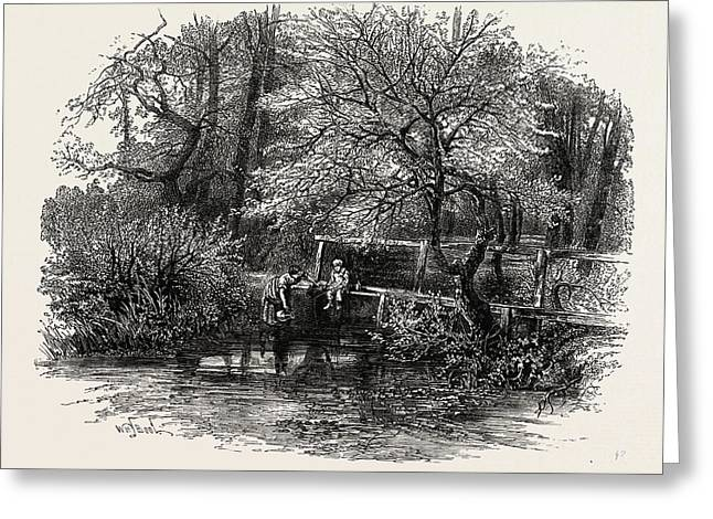 Markeaton Brook, The Dales Of Derbyshire Greeting Card