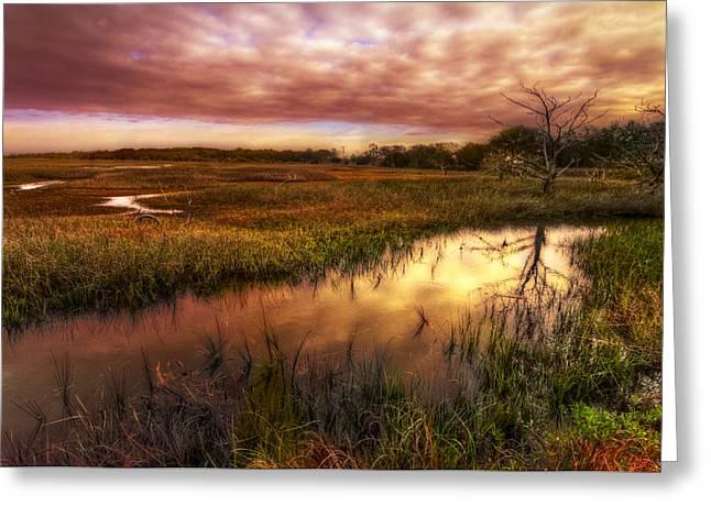 Marsh At Dawn Greeting Card by Debra and Dave Vanderlaan