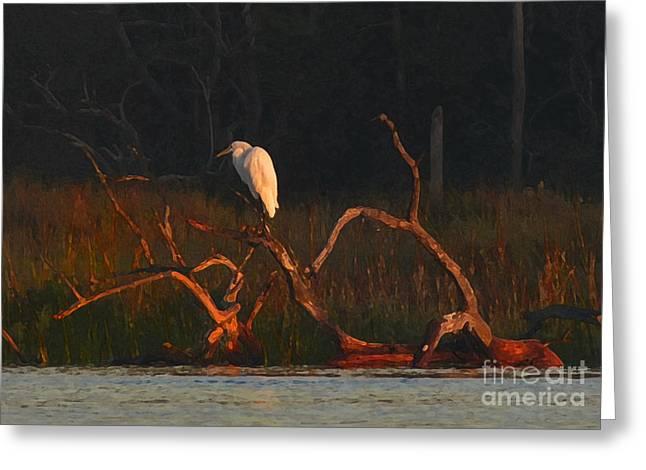 Greeting Card featuring the digital art Marsh Bird Sunrise by Deborah Smith