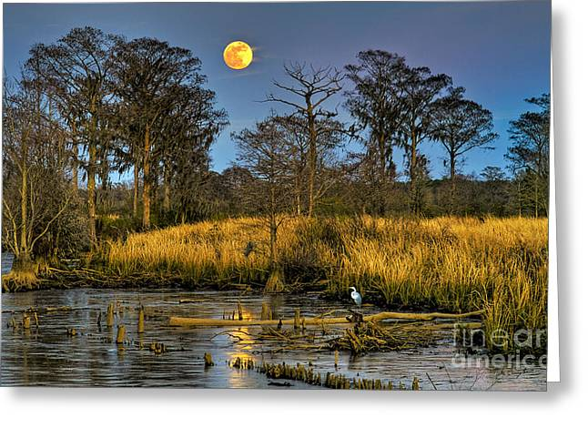 Pawleys Island Marsh Moon Greeting Card