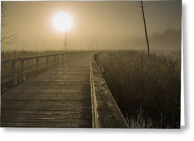 Marsh Morning Greeting Card