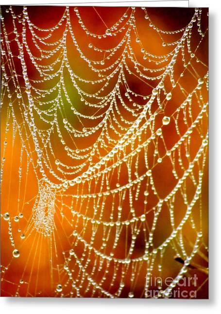 Marsh Pearls Greeting Card by Carol Groenen