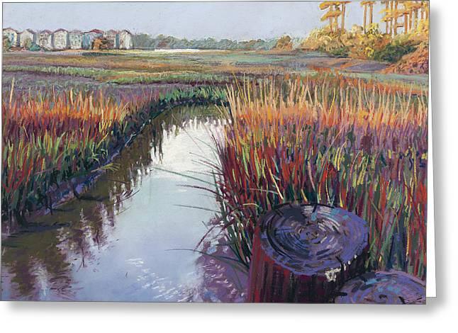 Marsh View Greeting Card by David Randall