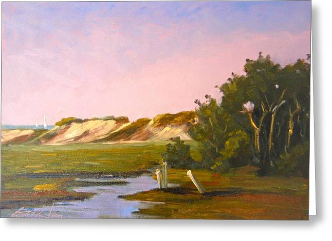 Marshlands Plymouth Landing Greeting Card by Betty Ann Morris