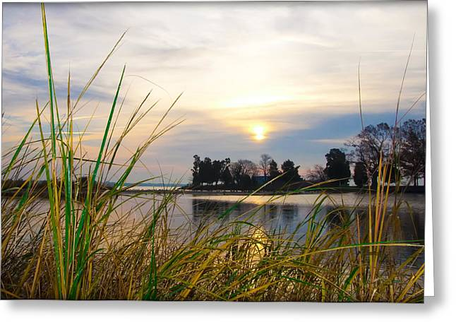 Maryland Morning Greeting Card by Bill Cannon