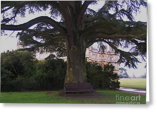 Mary's Bench At Downton Greeting Card by Courtney Dagan