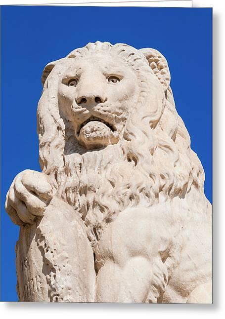 Marzocco Lion, Piazza Santa Croce Greeting Card