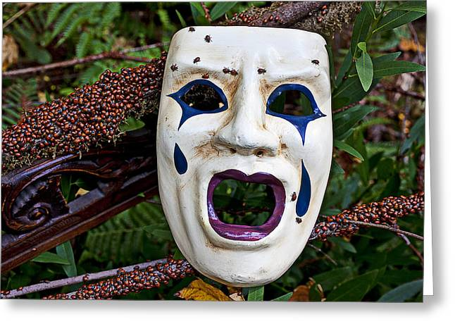 Mask And Ladybugs Greeting Card by Garry Gay