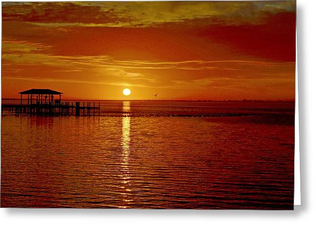 Greeting Card featuring the photograph Mass Migration Of Birds With Colorful Clouds At Sunrise On Santa Rosa Sound by Jeff at JSJ Photography