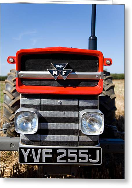 Massey Ferguson 135 Vintage Tractor Greeting Card by Paul Lilley