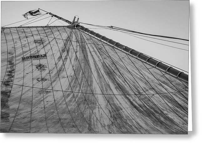 Mast And Sail I Greeting Card by Marco Oliveira