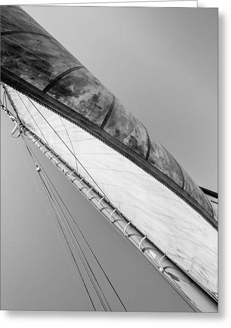 Mast And Sail IIi Greeting Card by Marco Oliveira