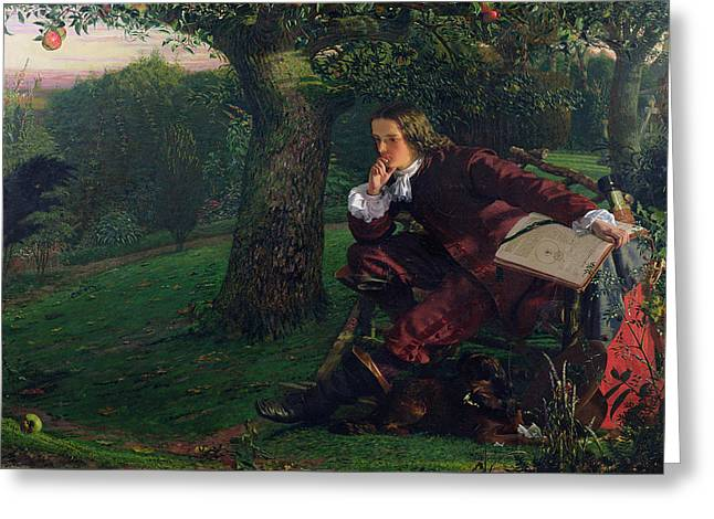 Isaac Newton Greeting Card by Robert Hannah