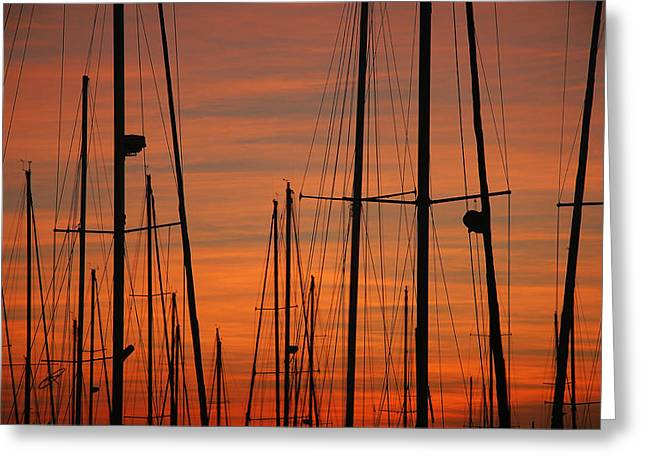 Masts At Sunset Greeting Card