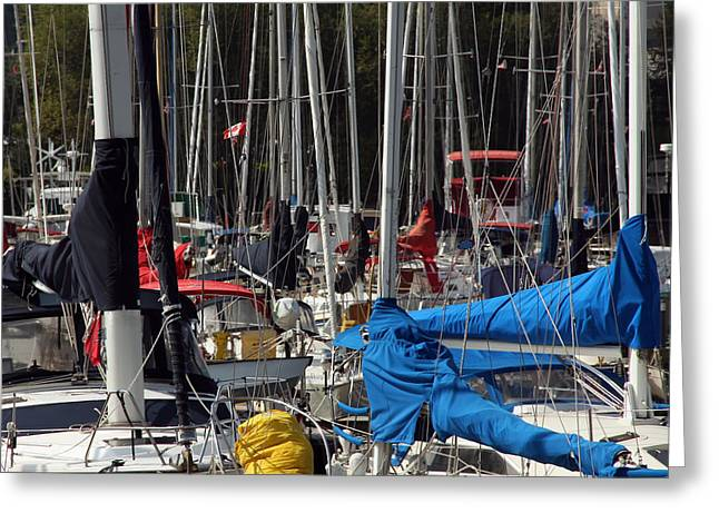 Masts Greeting Card by Jim Nelson
