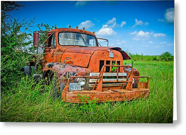 Greeting Card featuring the photograph Mater by Allen Biedrzycki