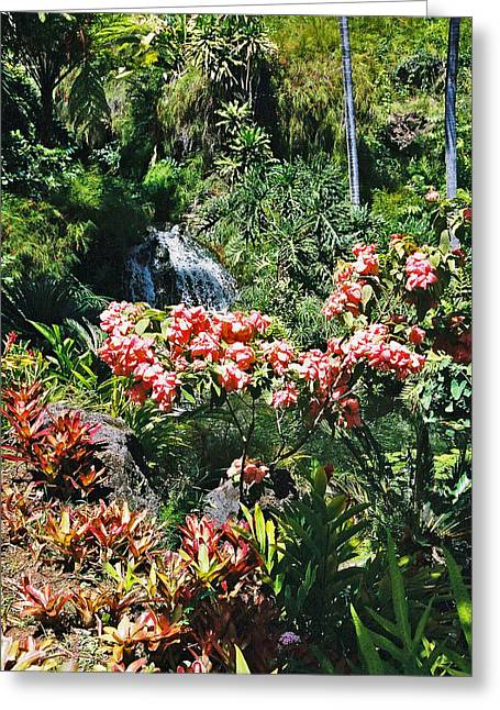 Greeting Card featuring the photograph Maui At Its Best Lan 42 by G L Sarti