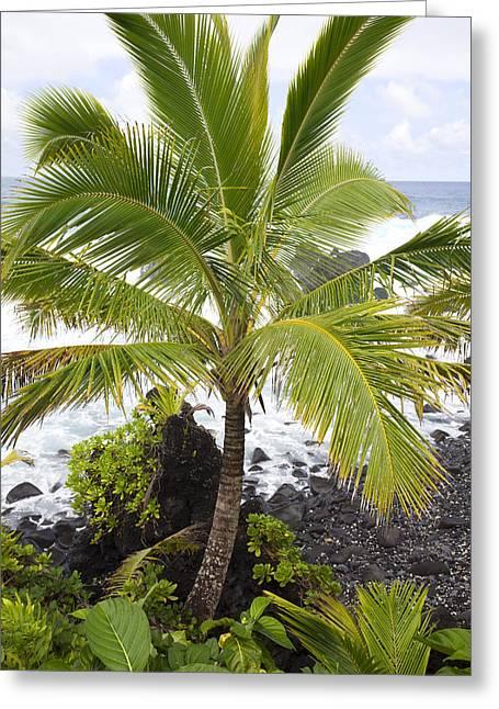 Maui Coast Greeting Card by Jenna Szerlag