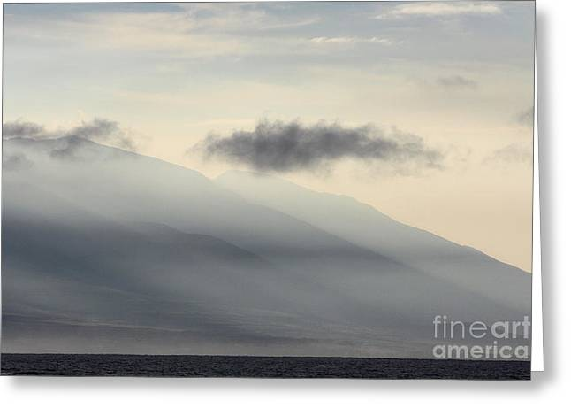 Maui In Gray Greeting Card
