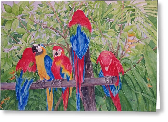 Maui Macaws Greeting Card