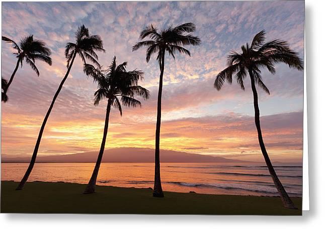 Maui Sunrise Greeting Card