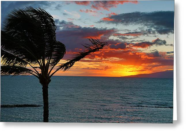 Maui Sunset Greeting Card by John Hancock