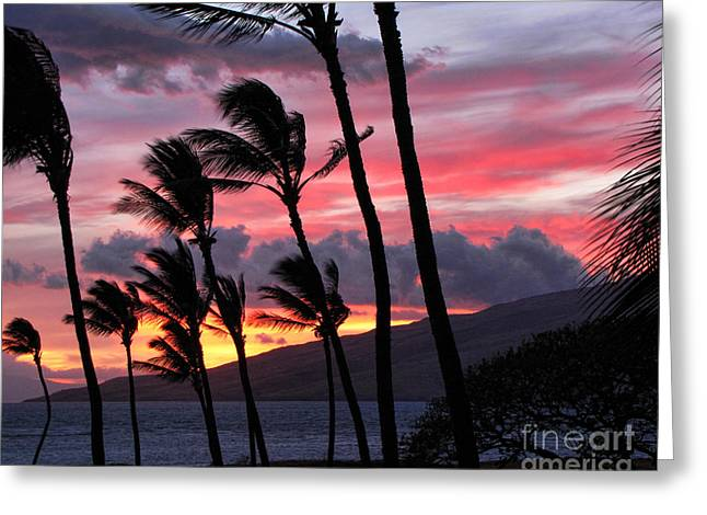 Maui Sunset Greeting Card by Peggy Hughes