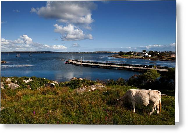 Maumeen Quay, Gorumna Island Greeting Card by Panoramic Images