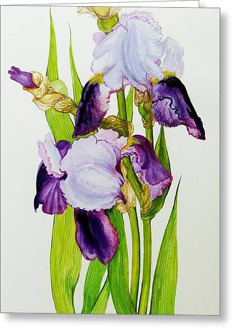 Mauve And Purple Irises With Two Buds  Greeting Card by Joan Thewsey