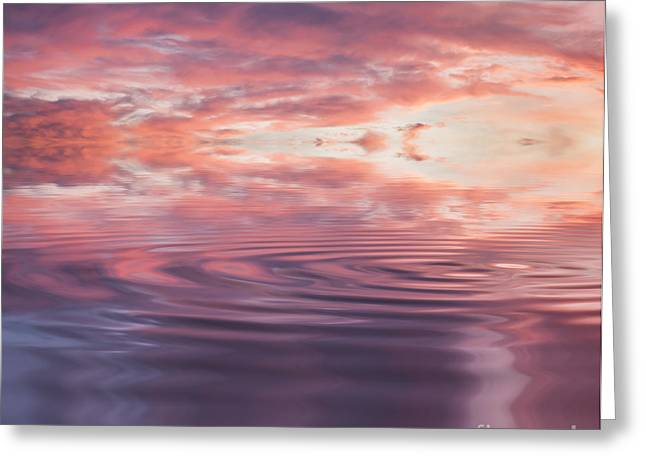 Mauve Reflection Greeting Card by Holly Martin