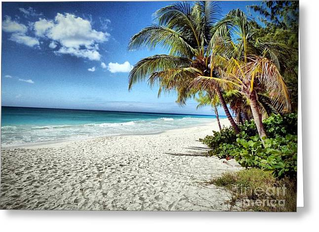 Maxwell Beach Barbados Greeting Card