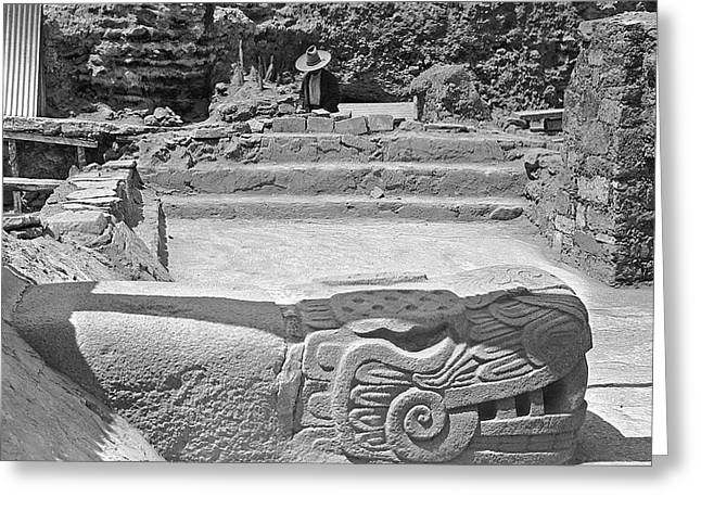 Mayan Temple Excavation Greeting Card