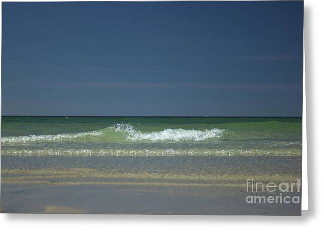 Mayflower Beach On Cape Cod Greeting Card by Amazing Jules