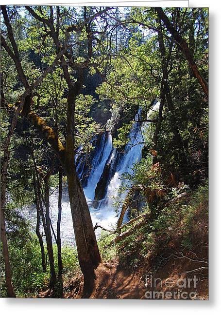 Greeting Card featuring the photograph Mcarthur-burney Falls Side View by Debra Thompson