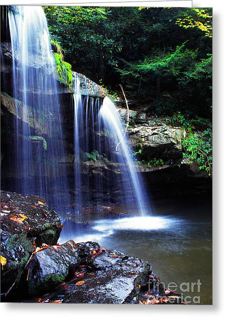 Mccoy Falls Birch River Greeting Card