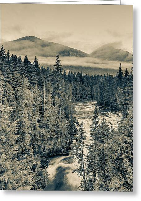 Mcdonald Creek Vertical Greeting Card