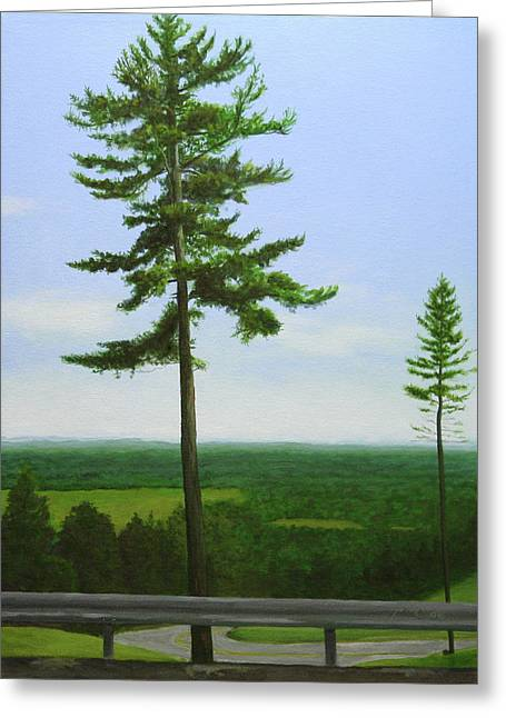 Mcgregor Pine Greeting Card by Paul Chapman