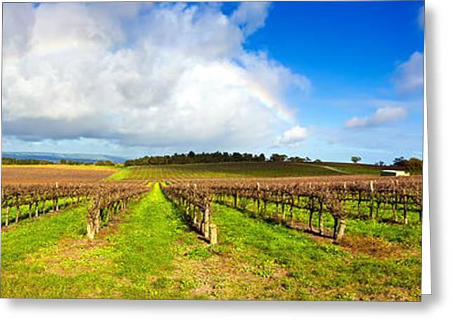 Mclaren Flat Vineyards  Greeting Card