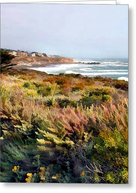 Meadow At Ocean Coast Greeting Card by Elaine Plesser