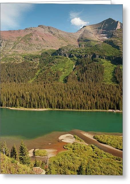 Meadow, Mountain, And Avalanche Path Greeting Card