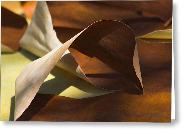 Mebius Strip Greeting Card