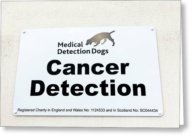 Medical Detection Dogs Sign Greeting Card by Louise Murray