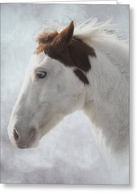 Medicine Hat Greeting Card by Ron  McGinnis