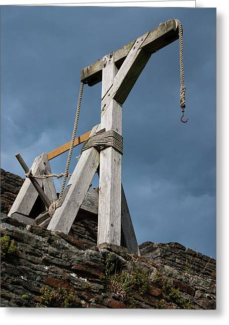 Medieval Crane Greeting Card by Mark Williamson