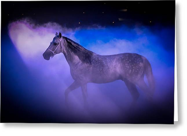 Medieval Times Tournament Horse Greeting Card by Gene Sherrill