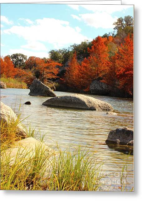 Fall Cypress At Bandera Falls On The Medina River Greeting Card