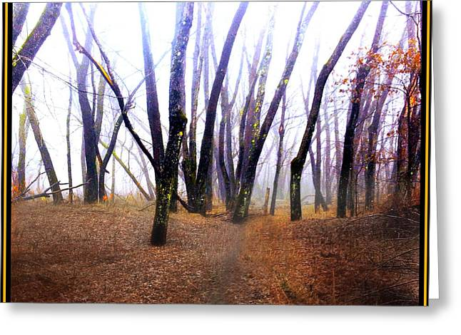 Greeting Card featuring the photograph Meditation On Fear by Wayne King